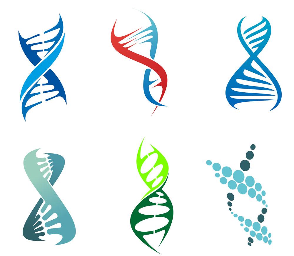原来基因就是业力! - 纯净心 - 纯净心